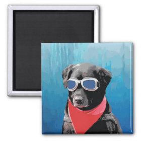 Cool Dog Black Lab Red Bandana Blue Goggles Refrigerator Magnet