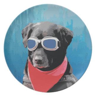 Cool Dog Black Lab Red Bandana Blue Goggles Plate