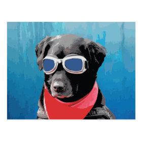 Cool Dog Black Lab Red Bandana Blue Goggles Postcard
