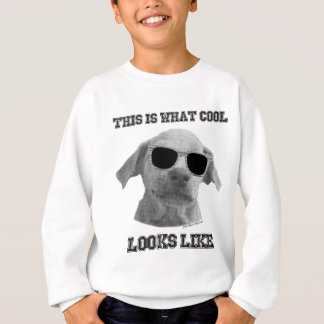 Cool Dog Sweatshirt