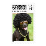 Cool Dog US Postage Stamps