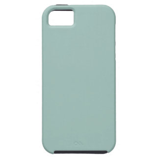 Cool Duck egg blue - add own text, image, design iPhone 5 Cases