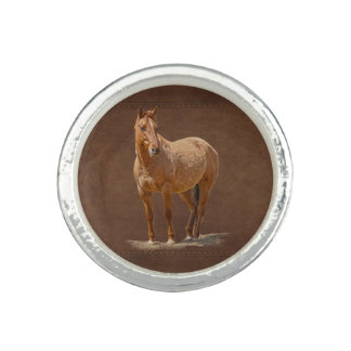 Cool Dun Horse on Leather-effect Riding Ring