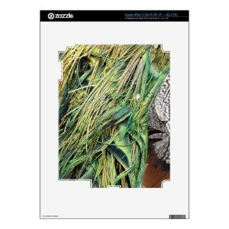 Cool Exotic Peacock Feathers iPad 3 Skin