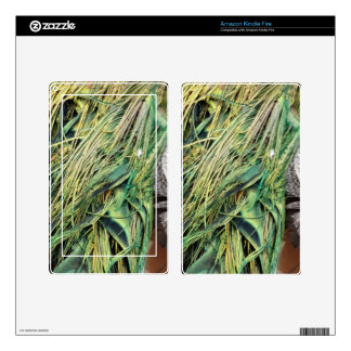 Cool Exotic Peacock Feathers Skins For Kindle Fire
