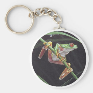 Cool Frog Key Chains