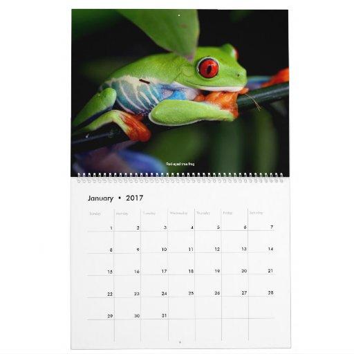 Cool Frogs Calendar