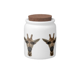Cool Giraffe Incognito Candy Jar
