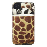 Cool Giraffe Pattern and Zebra Stripes Coffee Mugs Case-Mate iPhone 4 Cases