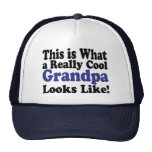 Cool Grandpa Hat