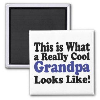 Cool Grandpa Fridge Magnets