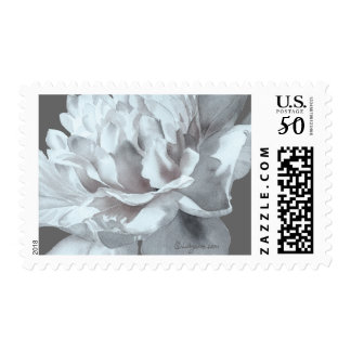 Cool Gray Peony Wedding Postage