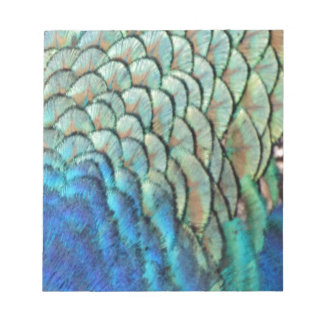 Cool Green Peafowl Feathers Notepad