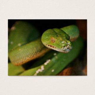 Cool Green Tree Boa Business Card