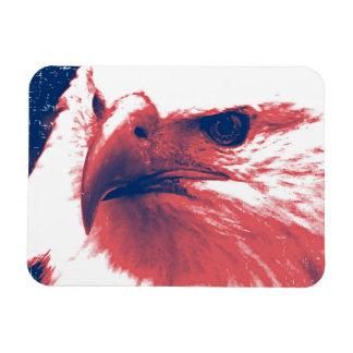 Cool Grunge Bald Eagle Magnet
