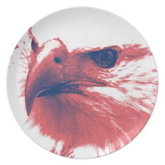 Cool Grunge Bald Eagle Plate