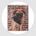 Cool Hand Pug Round Stickers
