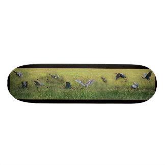 Cool Heron Collage Skateboard