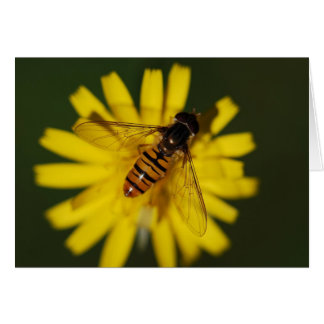 Cool Honey Bee on Flower in Nature Photography Card