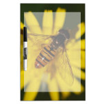 Cool Honey Bee on Flower in Nature Photography Dry Erase Whiteboard
