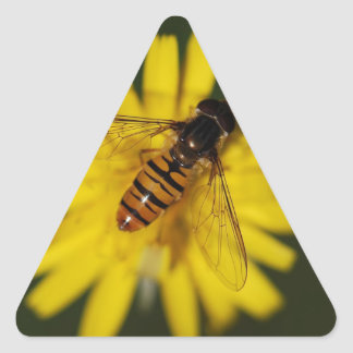 Cool Honey Bee on Flower in Nature Photography Triangle Sticker