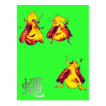Cool Insect Postcards