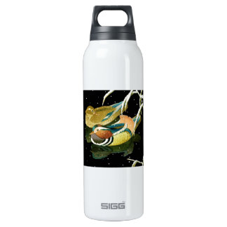 Cool japanese mandarina duck black pond snow SIGG thermo 0.5L insulated bottle