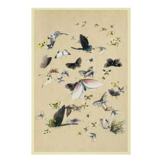 Cool japanese vintage ukiyo-e butterfly scroll poster