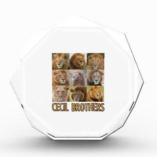 cool Lion designs Acrylic Award