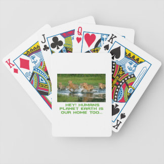 cool Lion designs Bicycle Playing Cards