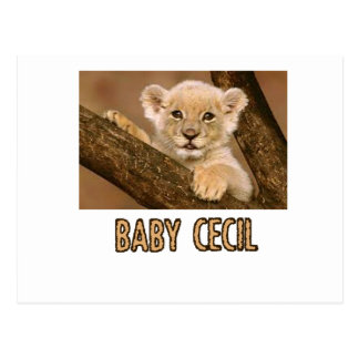 cool Lion designs Postcard