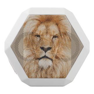 Cool Lion Speaker