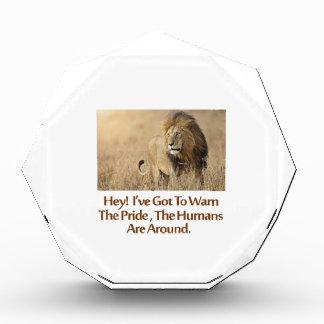 cool Lions designs Acrylic Award