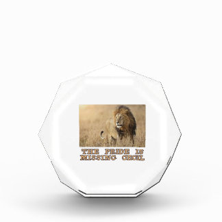 cool Lions designs Award