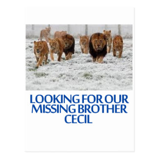 cool Lions designs Postcard