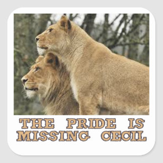 cool Lions designs Square Sticker