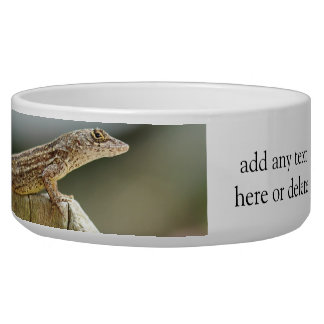 Cool Lizard Photography Bowl