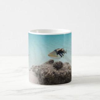 Cool Maldives White Sand Lagoon Fish Souvenir Coffee Mug