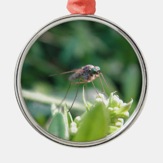 Cool mosquito christmas ornament