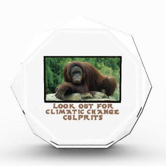 cool Orangutan designs Awards