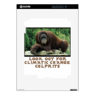 cool Orangutan designs Decal For iPad 2
