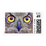 Cool Owl Eyes Photo Postage Stamp