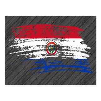 Cool Paraguayan flag design Postcard