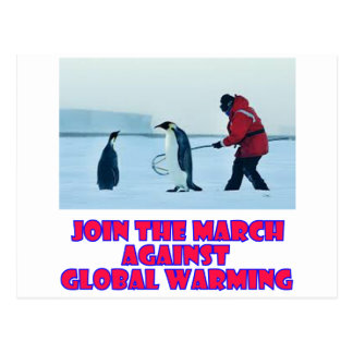 cool Penguin designs Postcard