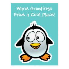 Cool Penguin Postcard
