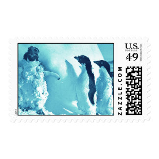 Cool  penguins after the blizzard postage