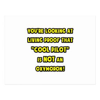Cool Pilot Is NOT an Oxymoron Postcard