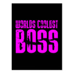 Cool Pink Gifts for Bosses : Worlds Coolest Boss Post Cards