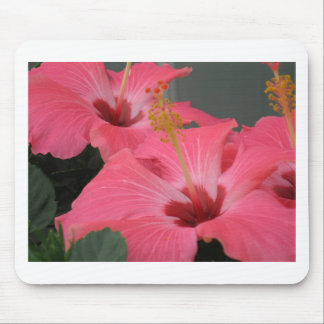 Cool Pink Hibiscus Mouse Pad