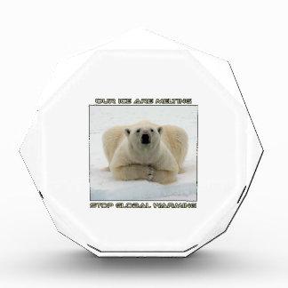 cool POLAR BEAR AND GLOBAL WARMING designs Award